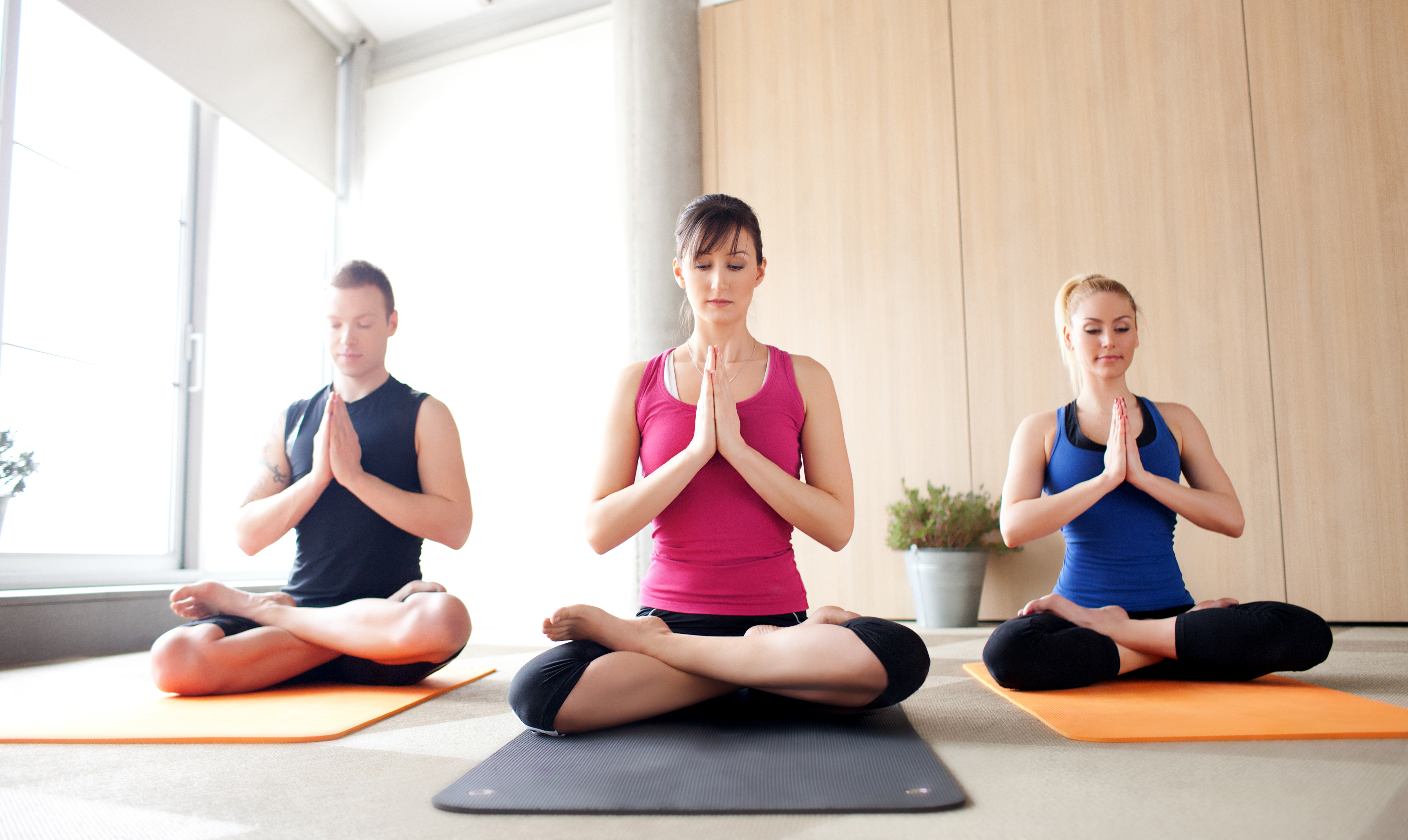 Vancouver, Canada: The Journey Of Yoga Through Mind